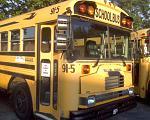 Skoolies-phillbus914-otherbusses