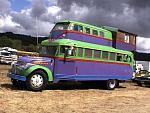 Skoolies-stuffonbus