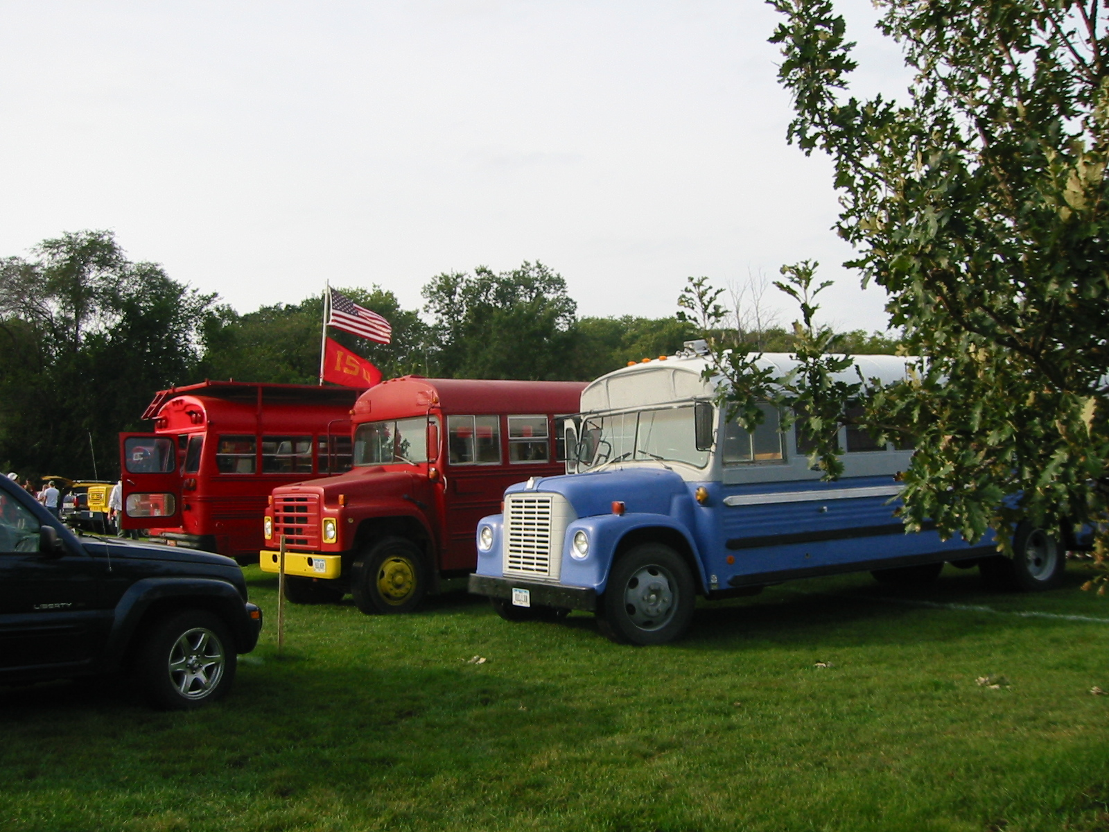 IMG 2806