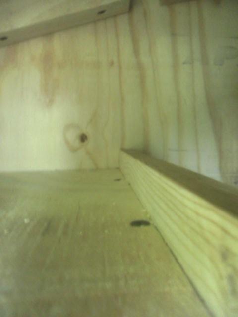 Kitchen Shelf Top