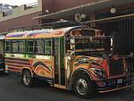 Stylized Chicken Bus