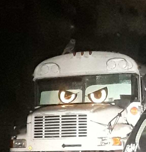 Ready for Holloween. Note the owl on the roof but the clearance lights.