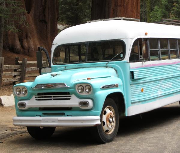 Das Bus at Sequoia NP