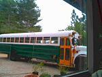 FVtheforestbus