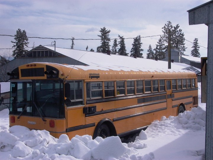 New%20Bus%2001