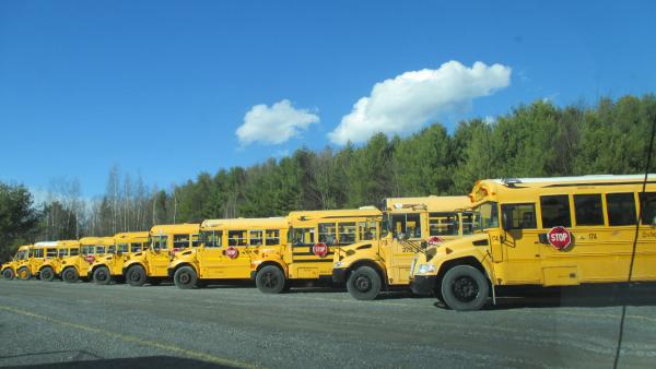 A small fraction of the many buses available.