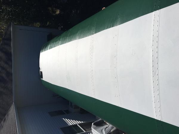 this is the finished roof.  The green was painted on top of the Uniflex Roof Coating