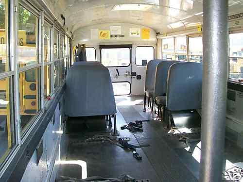 bus IB