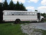 Skoolies-TygerCub-The-Great-Bus-Hunt-BOUGHT-IT